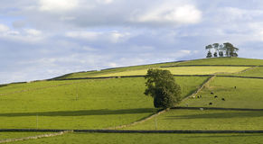 Peak district Royalty Free Stock Image