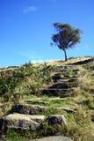 Peak District. A rocky stairway in the Derbyshire Peak District stock photos