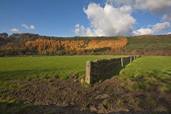 The Peak District in Autumn Colours Royalty Free Stock Image
