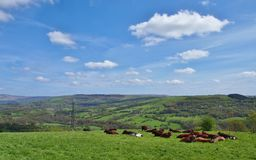 Peak District  Northern England Stock Images