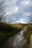 Peak District Stream Stock Images
