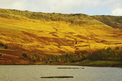 Peak District sunset glowing on the slopes of the Dovestone Resevoir. Peak District sunset glowing on the slopes of the Dovestone Reservoir Royalty Free Stock Image