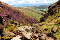 Peak District Valley of Heather Royalty Free Stock Image
