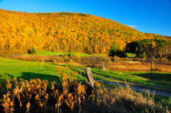Peak Fall Foliage Royalty Free Stock Photos