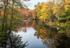 Peak Fall Foliage Royalty Free Stock Images