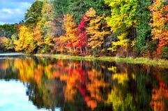 Peak Foliage. Peak fall foliage in the Pocono mountains Stock Photos