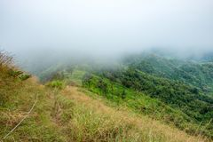 Peak green mountain in valley with foggy Royalty Free Stock Images