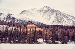 Peak and hotel Patria in Strbske pleso, Slovakia, old filter Stock Photo