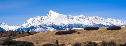 Peak Krivan in High Tatras mountains, Slovakia. Stock Images