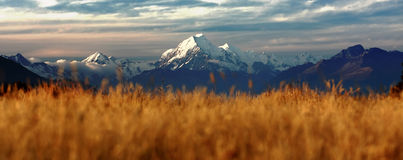 The Peak of Mount Cook Stock Photography