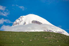 Peak of Mount Kazbek from the hill to the skies, Caucasus Stock Images