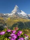 Peak of mountain Matterhorn in the Swiss Alps Royalty Free Stock Photos