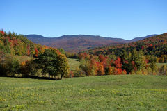 Peak Season Vermont field Royalty Free Stock Images