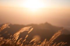 Peak sunrise Stock Photo