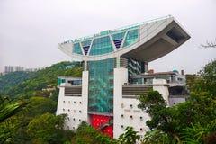 The Peak Tower. The photo taken in Victoria peak garden ,Hong kong Royalty Free Stock Image
