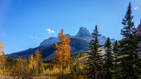 Peak visible from the road to the Takakkaw Falls in Yoho National Park Stock Image