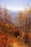 Peaks of Caucasus mountains in Krasnodar Stock Images
