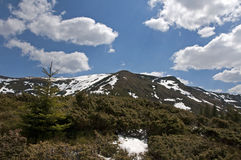 Peaks and clouds. Trip in Fagaras Mountains, in may Stock Photo