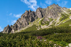 Peaks of High Tatras, Slovakia Royalty Free Stock Photography