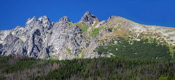 Peaks of High Tatras at summer Royalty Free Stock Photography