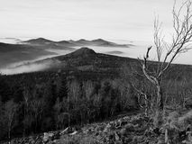 Peaks of hills and trees are sticking out from yellow and orange waves of mist. First sun rays. Black and White photo Royalty Free Stock Photo