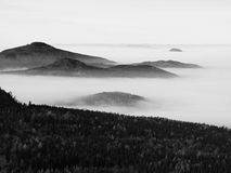 Peaks of hills and trees are sticking out from yellow and orange waves of mist. First sun rays. Black and White photo Stock Photos