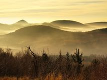 Peaks of hills and trees are sticking out from yellow and orange waves of mist. Stock Image