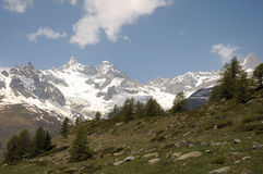 Peaks of Ober Gabelhorn and Wellenkuppe. Above Sunnegga royalty free stock images