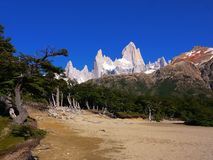The peaks surrounding Mount Fitz Roy etched against a clear blue sky. A flood plain approaching Mount Fitz Roy and surrounding peaks near El Chalten Santa Cruz Royalty Free Stock Photo
