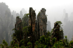 Peaks Of Tianzi Mountain Stock Photos