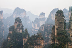 Peaks at Zhangjiajie Stock Photos