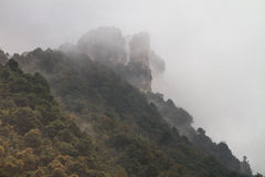 Peaks at Zhangjiajie Royalty Free Stock Images