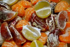 PEALED CITRUS BLEND. Colorful variety of oranges, tangerines and lemons ready to juice Stock Photography