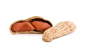 Peanut. Three peanut on isolated background Royalty Free Stock Photography