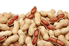 Peanut Royalty Free Stock Photo