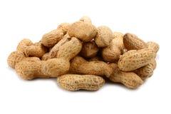 Peanut Royalty Free Stock Photo