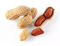 Free Peanut Stock Image - 33703381