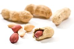 Peanut. Foodstuff theme: some  peanut over white background Royalty Free Stock Images