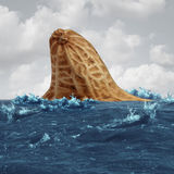 Peanut Allergy Danger. And food allergies risk and avoiding nuts and other allergic risky ingredients caution as a symbol for nuts and peanuts shaped as a shark Stock Images