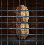 Peanut Allergy. And no peanuts allowed concept with the prohibited snack behind bars as a symbol of allergic reaction and baned ingredients causing food Stock Image