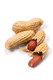 Peanut-Arachis hypogaea. This image is available for clipping work Stock Photography