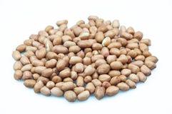 Peanut (arachis hypogaea) Royalty Free Stock Images