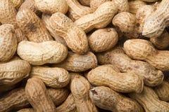 Peanut Background Royalty Free Stock Image