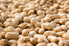 Peanut background Royalty Free Stock Photography