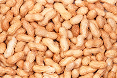 Peanut background. Background of peanuts in shells. Top view Stock Photography