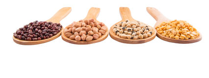 Peanut, Bean And Lentils II Stock Image