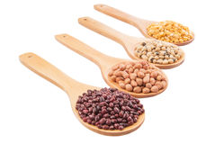 Peanut, Bean And Lentils VIII Stock Photo