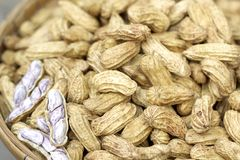 Peanut boiled in the market Royalty Free Stock Images