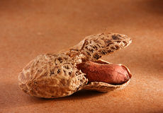 Peanut on brown Royalty Free Stock Images