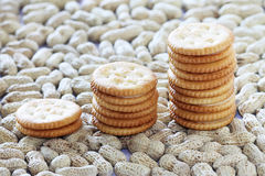 Peanut butter biscuits Royalty Free Stock Photo